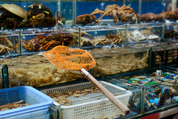 Prospect of China's Domestic Seafood Looks Optimistic this Year
