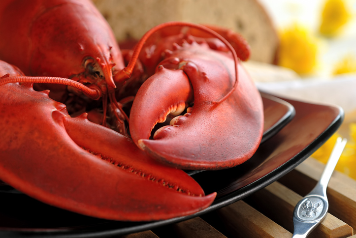 Maine Restaurants Cope with Climbing Lobster Prices