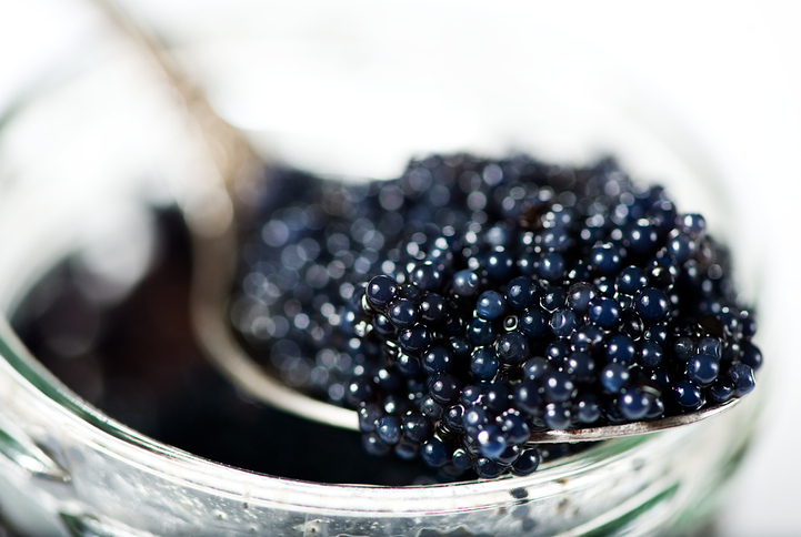 Fisheries Official: Caviar Exports Fetched Iran Over $3.5M Last Year
