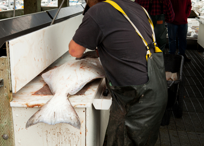 Alaskas Halibut, Sablefish, Crab Values for Cost Recovery