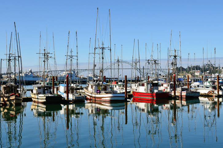 Pacific Northwest Delegation Looks to Net Assistance for West Coast Fishermen, Processors