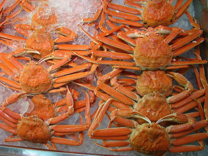 Russia Expects No Significant Increase in Crab Harvests; More Live Exports in Future