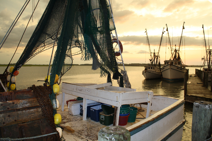 USDA Eyeing Purchase of U.S. Shrimp, Alaska Pollock