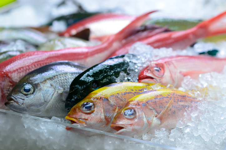 JAPAN: Retailers Experience Strong Seafood Sales in August