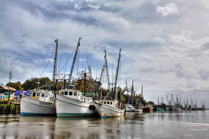 Conservation Groups Sue NMFS Over Trump-era Gulf Shrimp Boat Sea Turtle Rule Changes