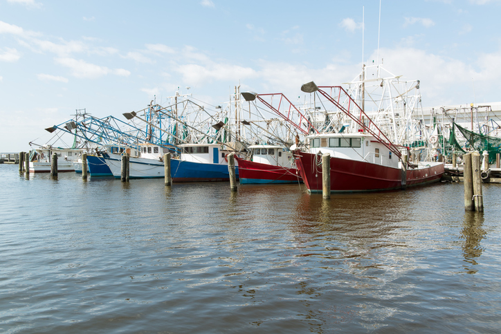 NOAA's Southeast Fisheries COVID-19 Report Reveals Impact on Seafood Dealers and Processors