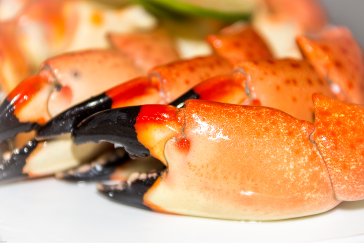Florida Stone Crab Season to Close on Thursday