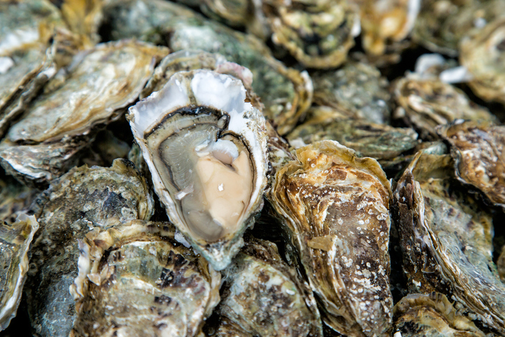 Connecticut Delegation Looking for USDA to Reverse Decision on Shellfish Farmer COVID-19 Aid