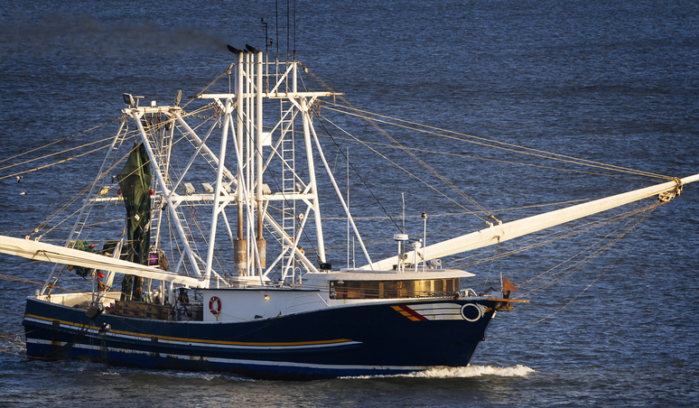 Gulf of Mexico Shrimpers Harvest Another 2 Million Pounds in April