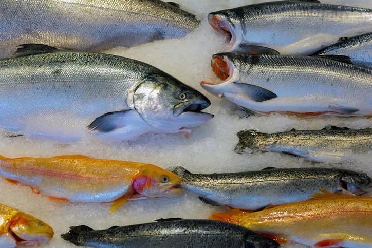 First Copper River Salmon Going to Health Care Workers With Celebrity Chef Event Sunday