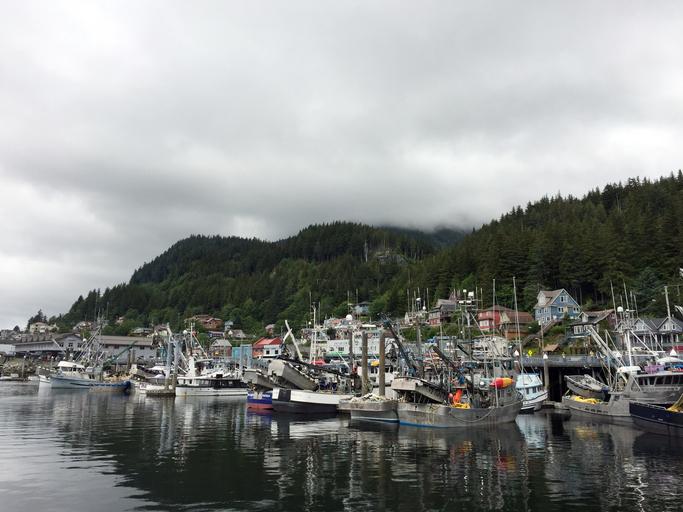 Fishing Facts Show WA is Biggest Winner in AK Fisheries