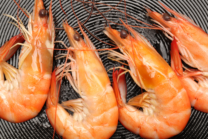 What Are We Supposed to Think About Shrimp?