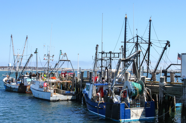 NOAA Report: Seafood Industry Experienced Broad Declines in 2020 Due to COVID-19