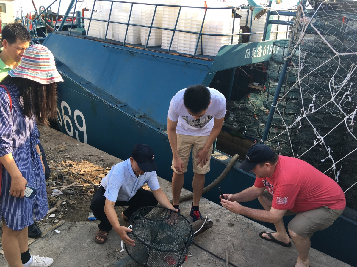 First Sustainable Crab Project Launched in China