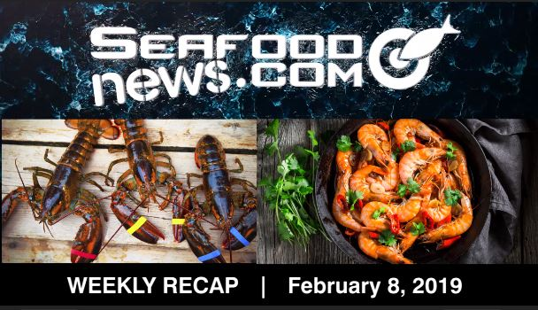 VIDEO: Tariff Impact on Lobster; Siluriformes Recalled; November Gulf Shrimp Landings and More