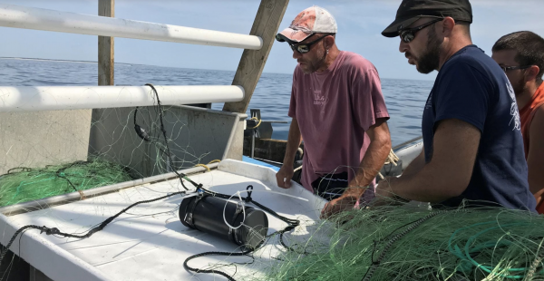 Underwater Cameras Tackle Fishing Gear Interactions, Entanglements
