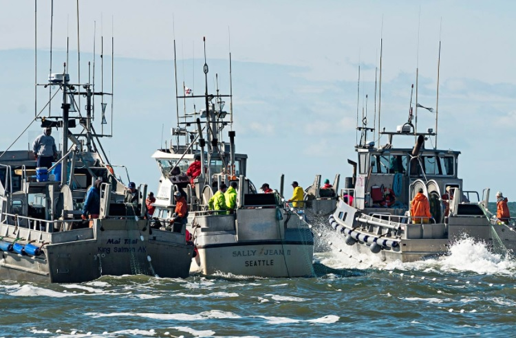 Bristol Bay Salmon Fishermen Set Record for Chilling Their Fish