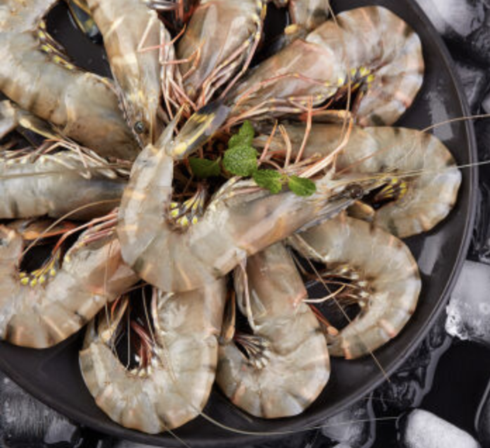 Bangladesh Takes First Steps to Cultivate Vannamei along with Black Tiger Shrimp
