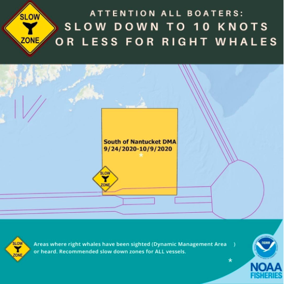 NOAA Extends Vessel Slow Speed Zone South of Nantucket to Protect Right Whales