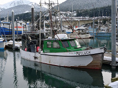 Alaska Fall Fisheries Gearing Up as Salmon Season Draws to a Close