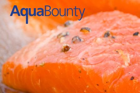 AquaBounty Complete $15.5 Million Public Stock Offering