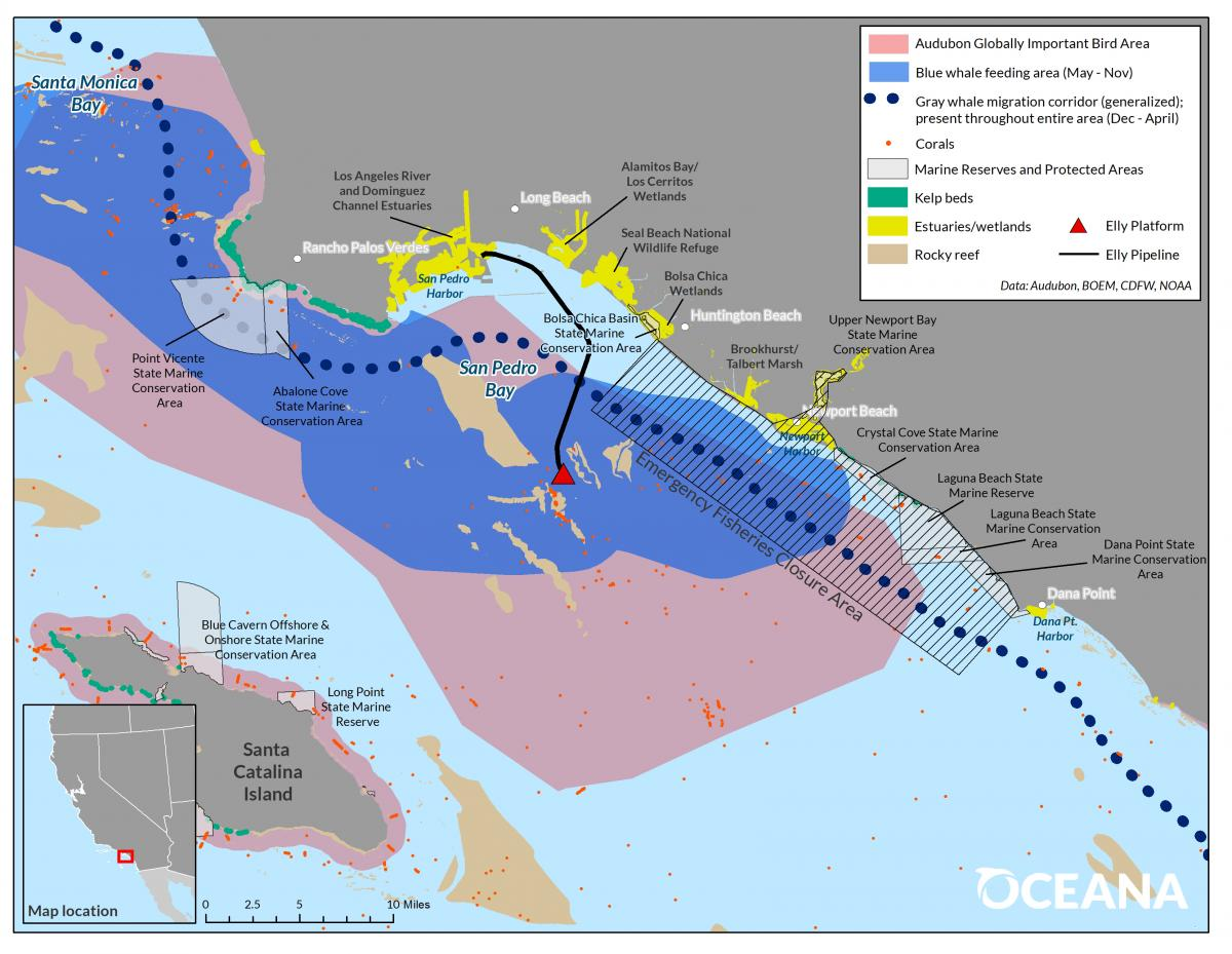 Oceana Analysis Assesses Impacts of California Oil Spill; Commercial Fishing At-Risk