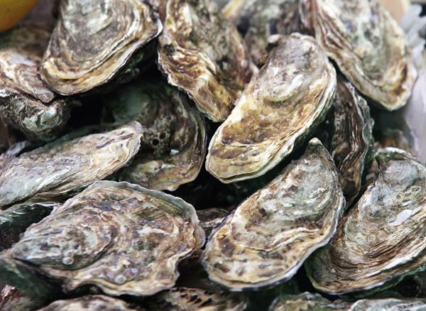 Genome BC Fund Projects to Improve Canada's Ability to Identify Oyster-Related Illnesses