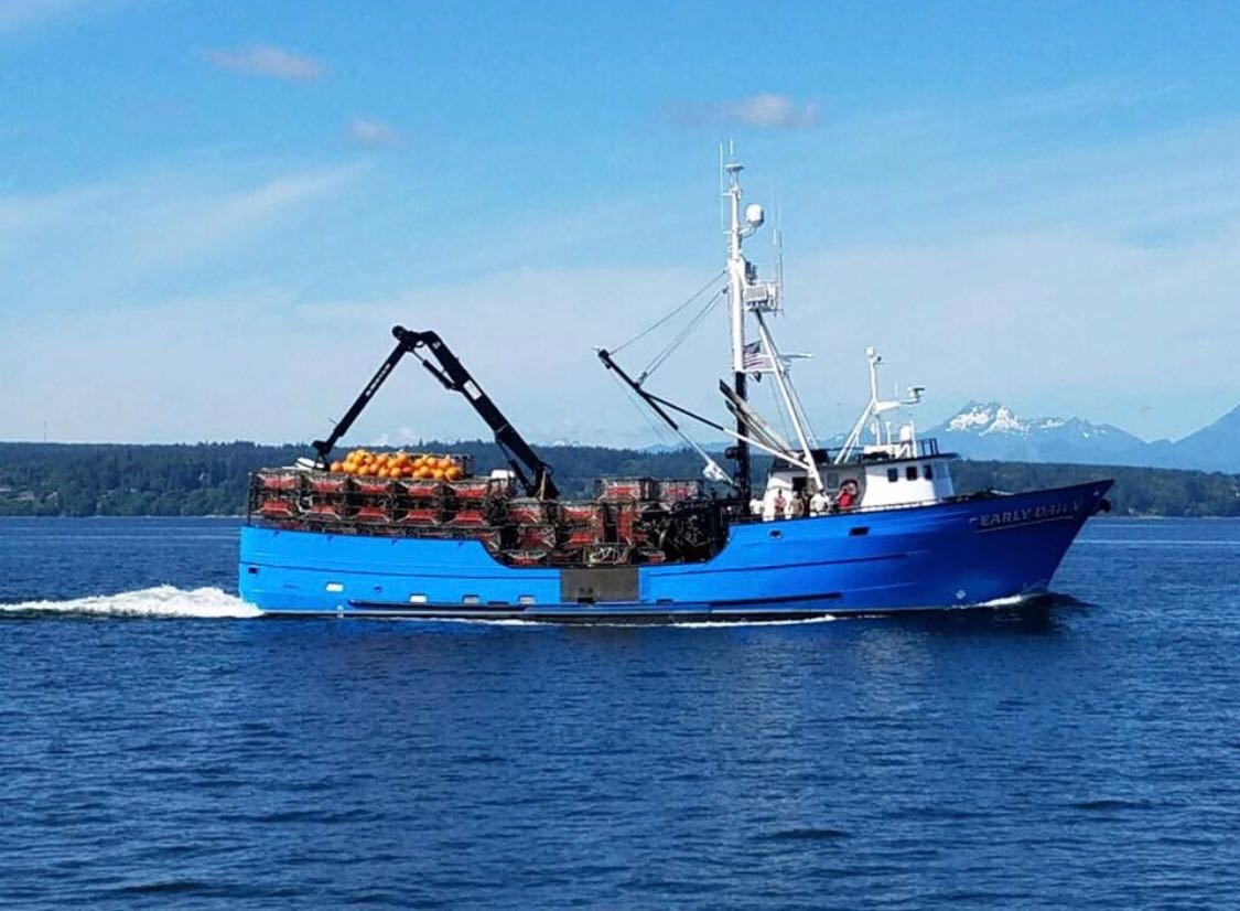Adak's Push Into Live King Crab Markets Continues Despite Hurdles