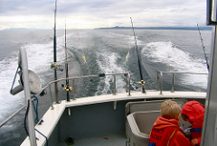 NOAA Cracking Down on Halibut Charter Fishing Violations