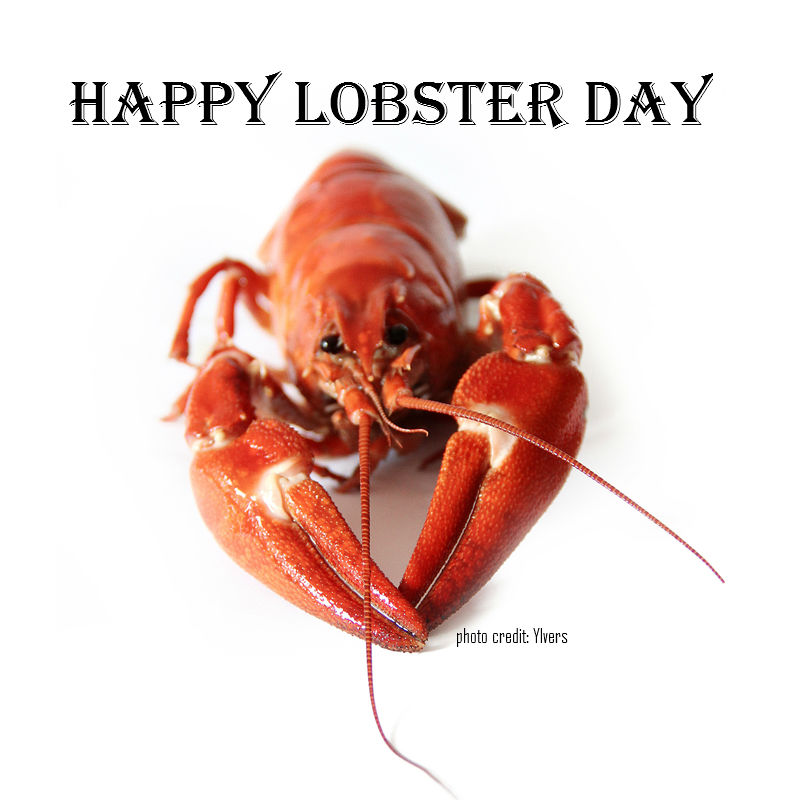Celebrate National Lobster Day With the Top Lobster Stories
