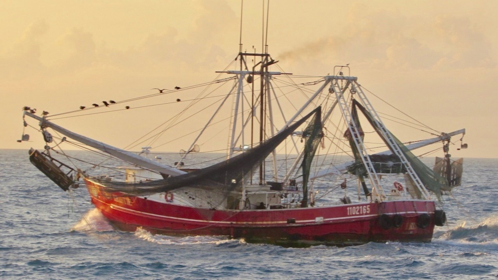 Coast Guard, NOAA Stop Vessel from Illegally Fishing Near Tortugas Ecological Reserve