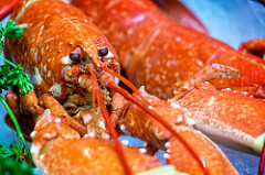 April 2018 Lobster Imports Lowest Monthly Total In 5 Years