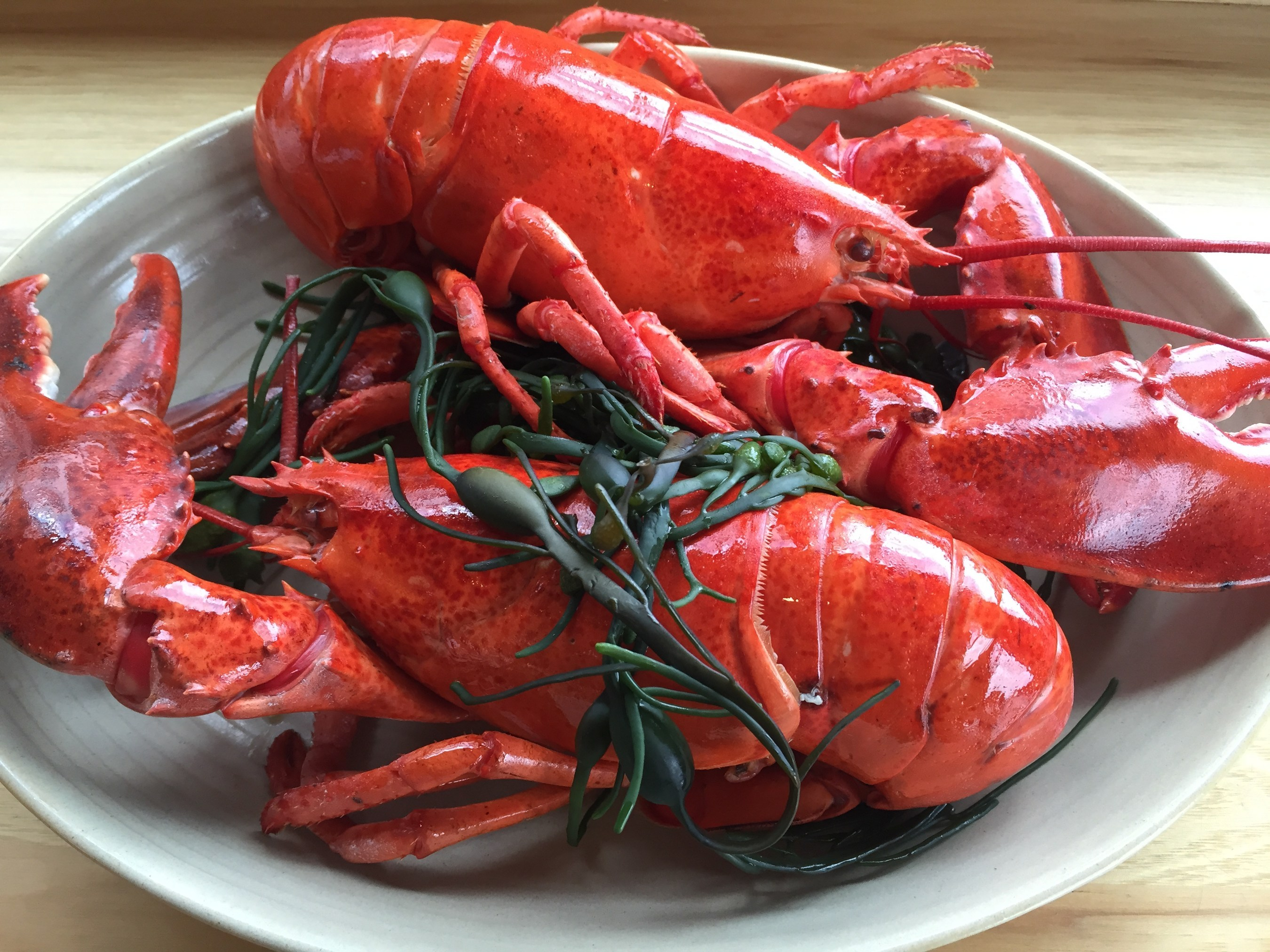 Snag Some Leap Year Lobster with Legal Sea Foods Deal
