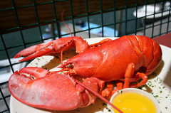 Senate Once Again Approves September 25 as National Lobster Day