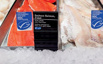 MSC Study Finds Seafood Consumers Care About Sustainability, But Price Still a Factor