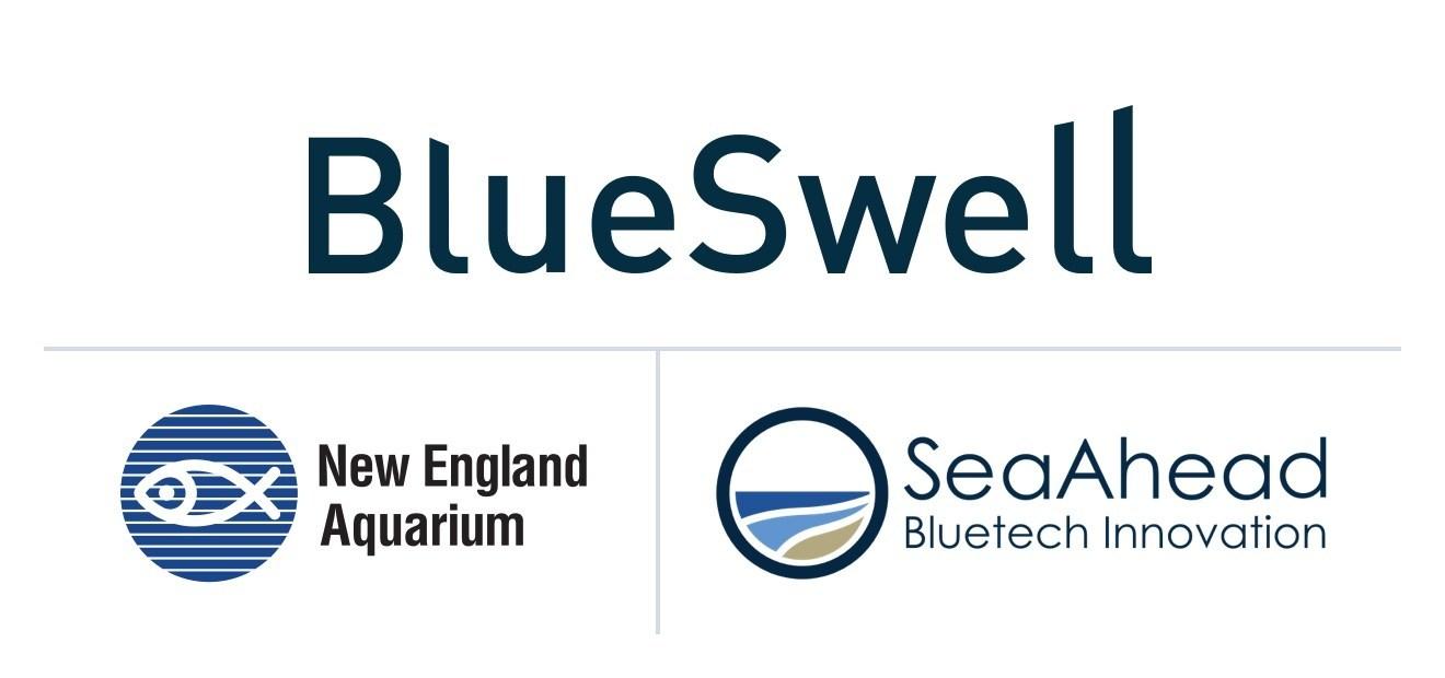 SeaAhead, New England Aquarium Pick Startups for BlueSwell Incubator Program