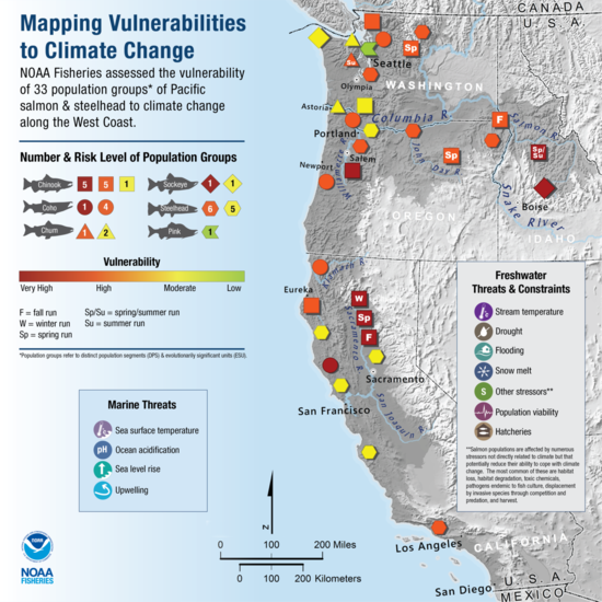 New NOAA Report Identifies West Coast Salmon That Are Vulnerable to Climate Change