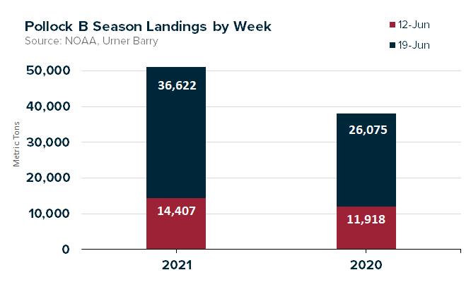 ANALYSIS: 2021 Pollock B Season Start Sees Improvement Over 2020