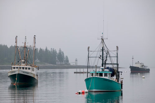 Market Grows for Community Supported Fisheries Bringing Expanded Benefits to Fishermen