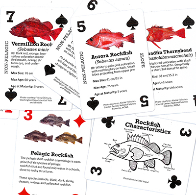 ADFG Introduces Rockfish Playing Cards as Education Tools