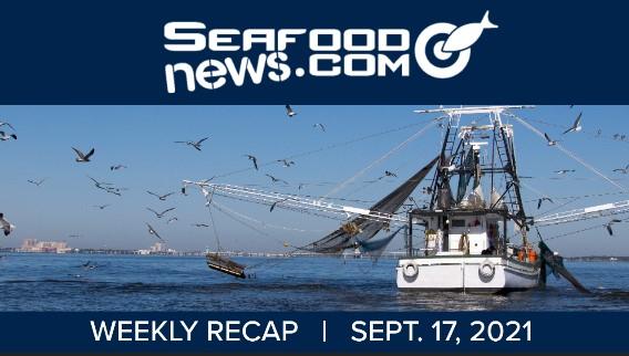 VIDEO: Alaska Snow Crab Stocks; Atlantic Sapphire Fire; Drift Gillnet Ban; Shrimp Landings