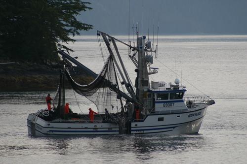 Alaska Fishing Updates, September
