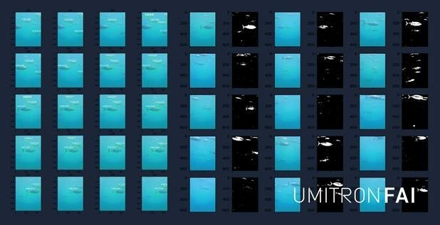 UMITRON Announces Fish Appetite Index, Ocean-based Fish Appetite Detection System