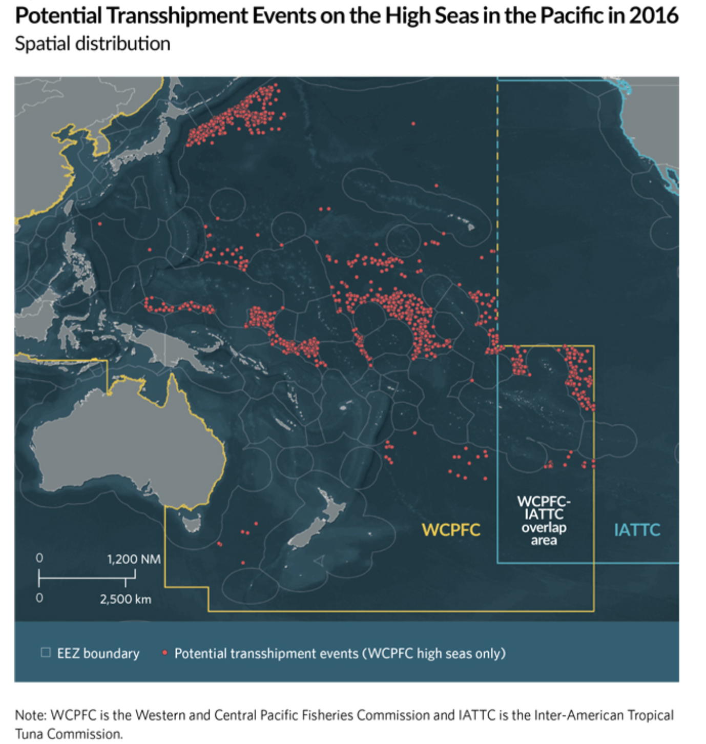 Pew Report Finds Transshipments in Western and Central Pacific Likely Underreported