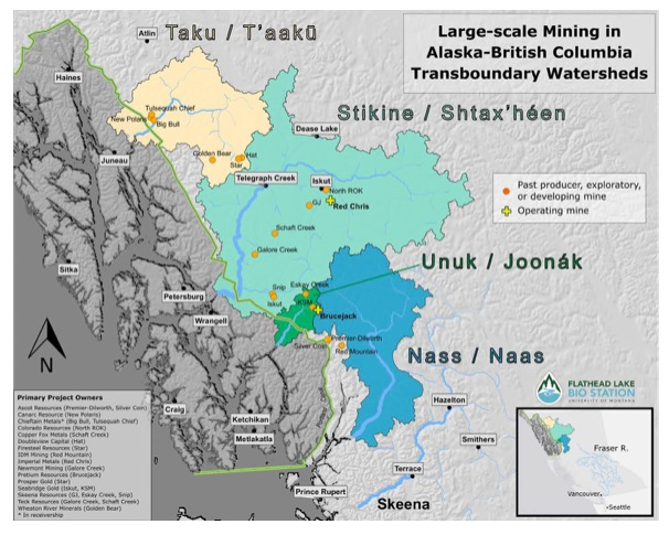 Perils to Alaska Salmon Rivers from B C  Mines Heard by AK House